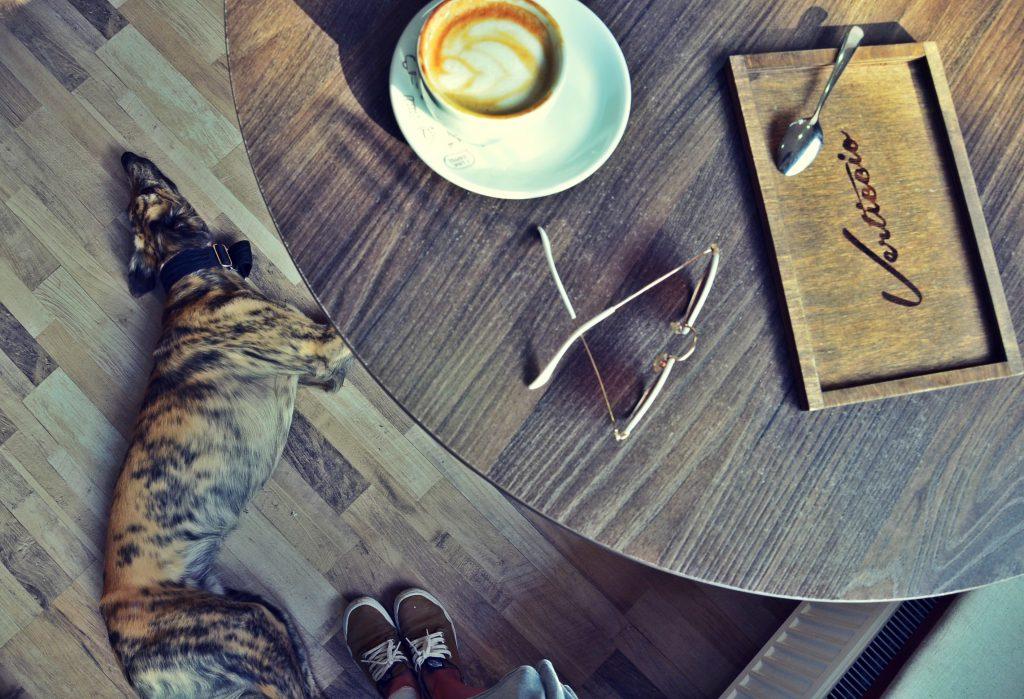 tacka pod kavu 3